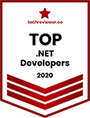 top-dot-net-developers